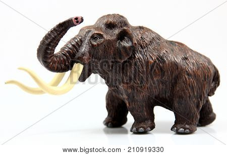 Toy mamut with huge tusks on white background poster