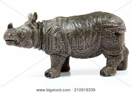 Toy Rhino, Rhinoceros unicornis on white background