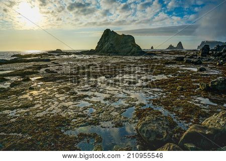 Sea Stack And Ocean With Sky Reflection