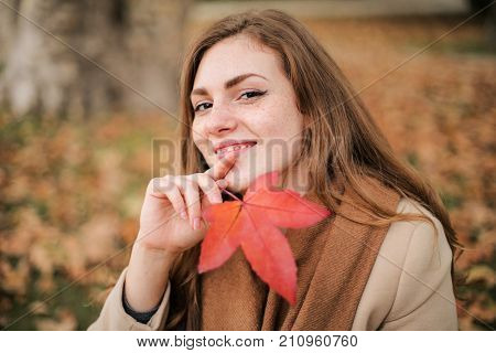 Beautiful smiling girl portrayed in an autumn day