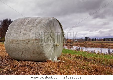Roll Bale By The River