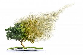 book of nature with grass and tree growth and disintegrate isolated on white background