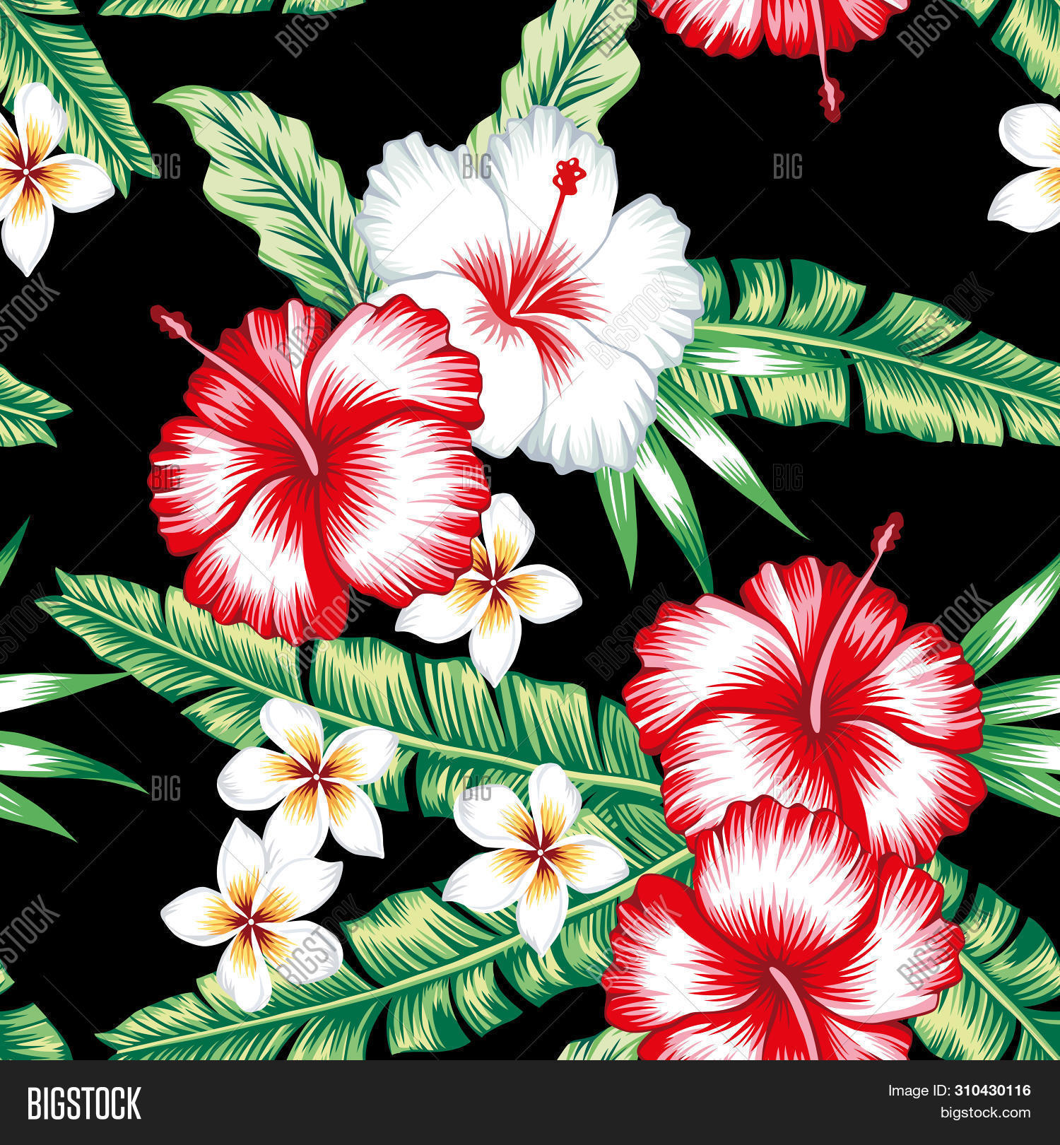 Tropic Summer Floral Image Photo Free Trial Bigstock