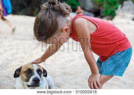 Little Boy Stroking A Stray Dog On The Beach