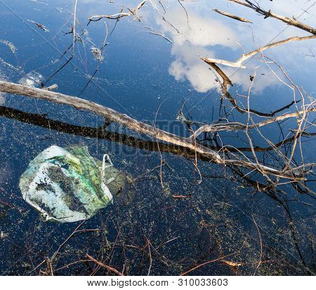 Garbage, Tree Branches And Reflection Of The Clouds In Water. Environmental Pollution. Water Polluti