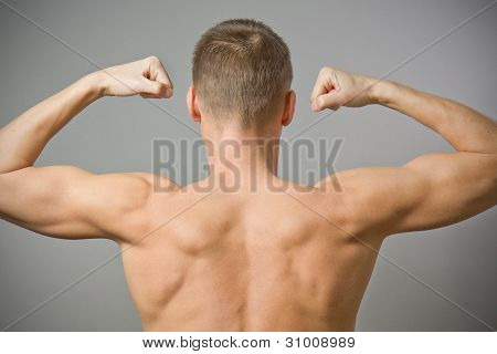 Back Of Sexy Muscular Man.