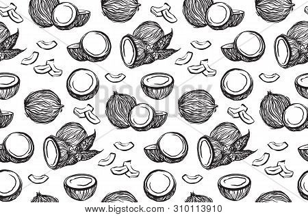 Black Sketch Coconuts Outline Seamless Pattern. Vector Ink Drawing Coco Fruits. Hand Drawn Graphic I