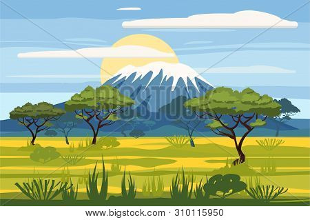 African Landscape Savannah Wild Nature. Grass, Bushes, Acacia Trees And Mountane. The Nature Of Afri