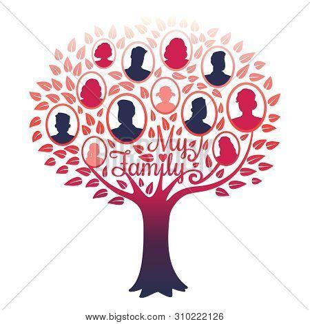 My Family Genealogy Tree Vector Isolated On White Background. Illustration Of Tree Family, Genealogi
