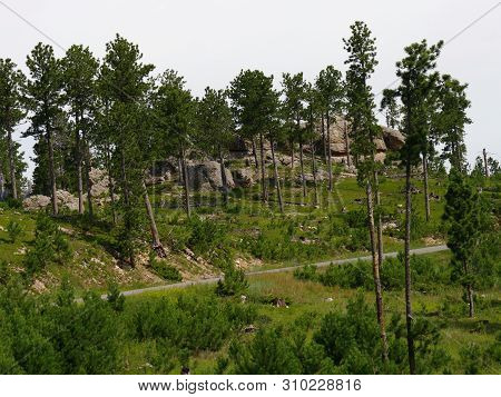 Scenic Views Along The Road Along Needles Highway At Custer State Park, South Dakota.