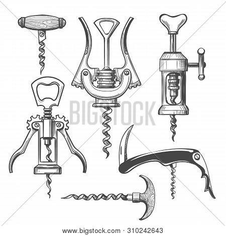 Corkscrew Sketch. Wine Opening Corkscrews Hand Drawn Vector Illustration, Bartender Bottle Open Tool