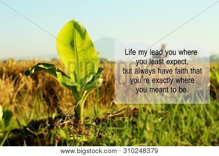 Inspirational Quote - Life May Lead You Where You Least Expect, But Always Have Faith That You Are E