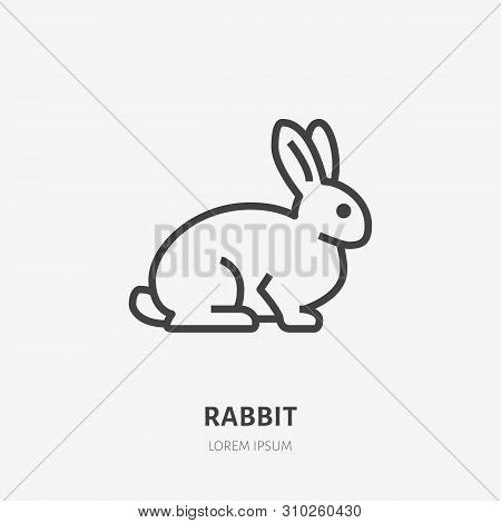 Sitting Rabbit Flat Line Icon. Vector Thin Sign Of Cute Bunny, Animal Logo. Pet Shop Outline Illustr