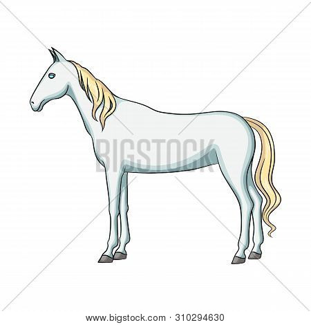 Vector Design Of Steed And White Logo. Collection Of Steed And Hoofed Vector Icon For Stock.
