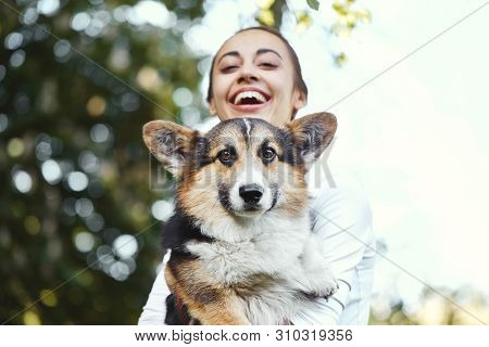 Welsh Corgi Pembroke Dog And Smiling Happy Woman Together In A Park Outdoors. Focus On The Corgi Dog