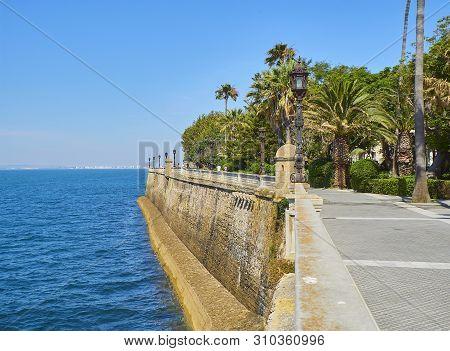Paseo De Carlos Iii Promenade With The Carlos Iii Gardens In The Background. Cadiz, Andalusia, Spain