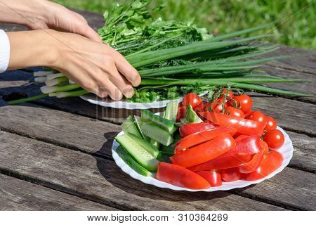 Healthy Food, Diet, Detox. Fresh Vegetables And Greenery Served By Woman On A Wooden Table.