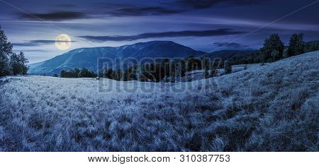 Late Summer Night Landscape In Mountains. Panorama With Beech Trees On The Grassy Meadow In Full Moo