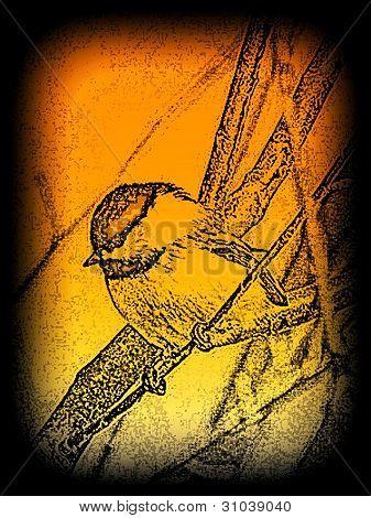 art illustration chick-a-dee on branch