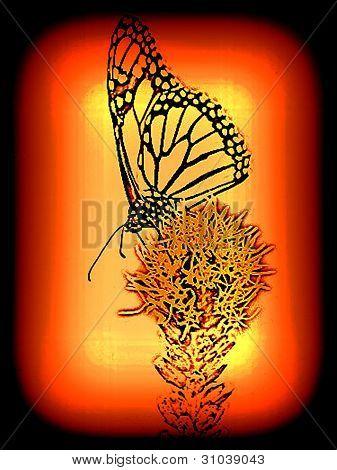 Neon like monarch butterfly on flower