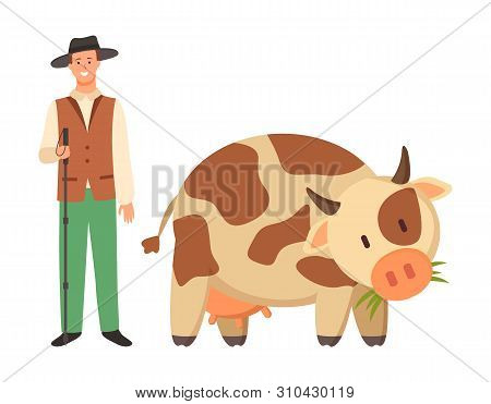 Farmer In Hat And Spotted Cow Isolated Cartoon Domesticated Rustic Animal With Horns. Vector Young B