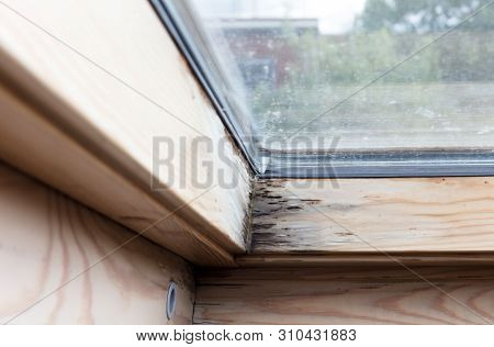 Roof Window After Leaking