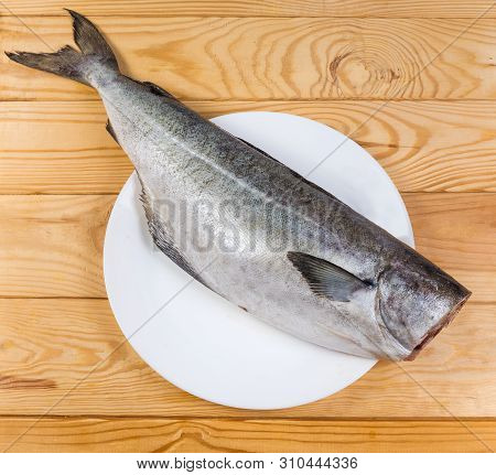 Raw Carcass Of Saithe, Also Known As Coalfish Without Head, Cleaned From Scales On Dish On The Rusti
