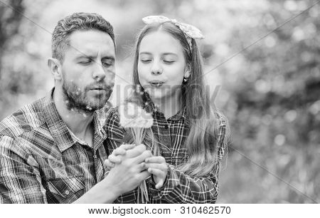 Dad and daughter collecting dandelion flowers. Keep allergies from ruining your life. Seasonal allergies concept. Outgrow allergies. Happy family vacation. Father and little girl enjoy summertime poster