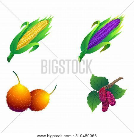 Corn, Gac, Mulberry, Asian Fruits And Vegetables.