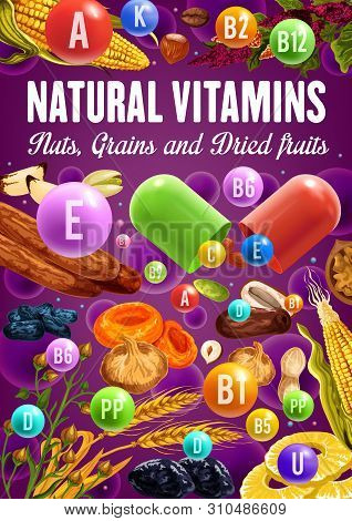 Nuts, Dried Fruit, Cereal Vitamins And Minerals Vector Design. Date, Fig And Peanut, Walnut, Prune A