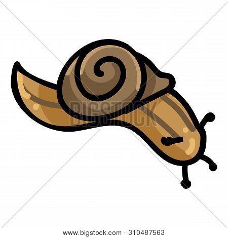 Cute Snail Cartoon Vector Illustration Motif Set. Hand Drawn Isolated Garden Creepy Crawlie Elements