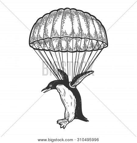 Penguin Bird Fly With Parachute As Paratrooper Sketch Engraving Vector Illustration. Scratch Board S