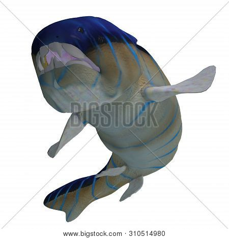 Dunkleosteus Fish Teeth 3d Illustration - Dunkleosteus Was A Carnivorous Placoderm Fish That Lived I
