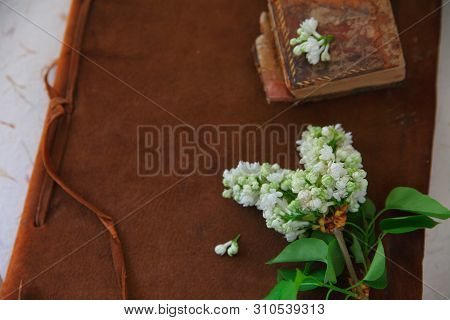 Old Books, One Leather-bound, With White Lilacs And Copy Space