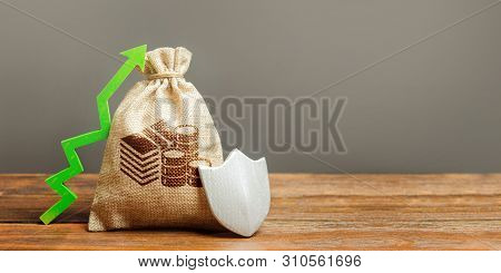 Bag With Cash Money Symbol, A Green Arrow Up And Shield. Client Rights Protection. Safeguarded Capit