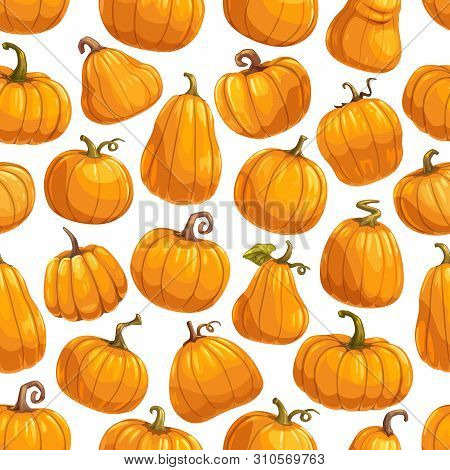 Pumpkin Vegetable Seamless Pattern Background With Vector Orange Gourds And Autumn Squashes, Green L
