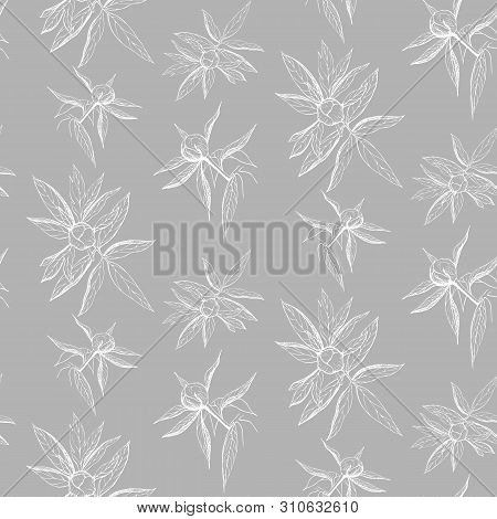 Seamless Ink Peony Flower Pattern On Gray Backdrop. Engraved Vintage Peony Wallpaper. Elegant White