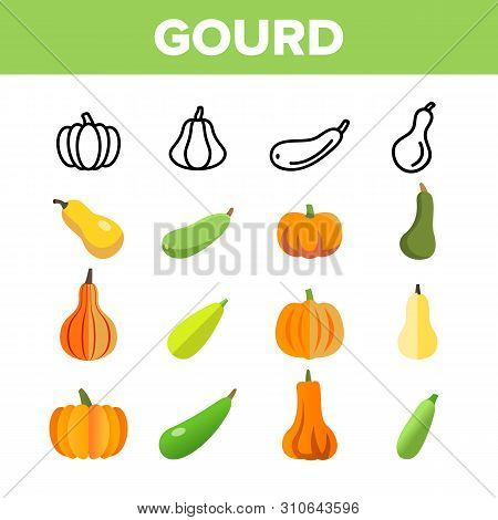 Gourd Autumn Season Harvest Vector Linear Icons Set. Differently Shaped And Colored Pumpkins. Hallow