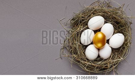 Winner, Exclusivity And Financial Success. One Golden Egg Among Group Of White Eggs In Nest, Empty S