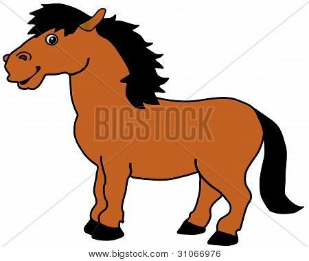 The Horse.