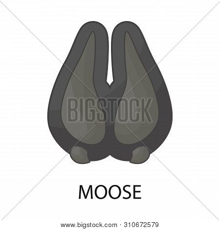 Vector Design Of Moose And Hoof Logo. Set Of Moose And Tracks Stock Vector Illustration.