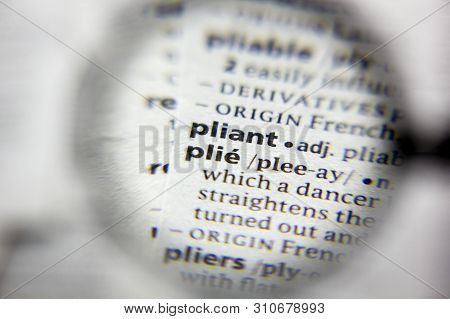 The Word Or Phrase Plie In A Dictionary