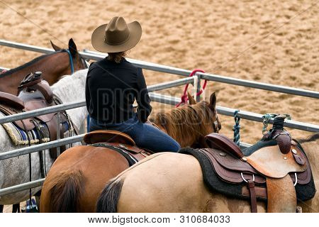 Cowgirl On Horse At Western Rodeo. Close Up
