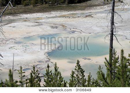 Norris Geyser Field Yellowstone