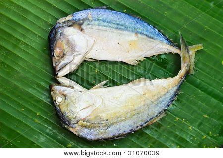 Chub mackerel on a banana leaf , closes up poster