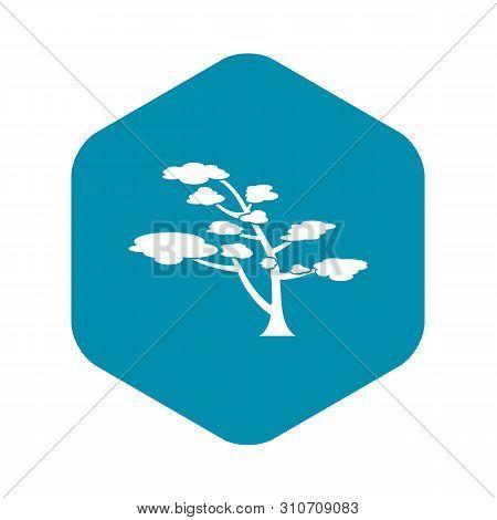 Cedar Icon. Simple Illustration Of Cedar Vector Icon For Web