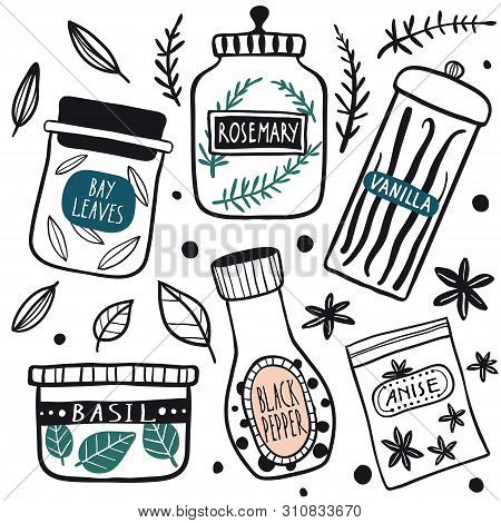 Herbs And Spices Jars Icon Set: Basil, Pepper, Rosemary, Anise, Vanilla, Bay Leaves. Hand Drawn Vect