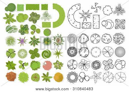 Trees Top View. Different Trees, Plants Vector Set For Architectural Or Landscape Design. Set Of Lin