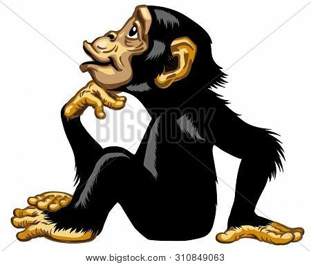 Cartoon Chimpanzee In Thinker Profile. Great Ape Or Chimp Monkey In Sitting Pose And Looking Up. His