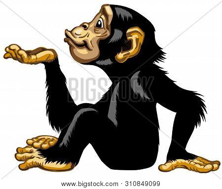 Cartoon Chimpanzee Keeping Empty Cupped Hand Palm Up. Great Ape Or Chimp Monkey In Sitting Pose Blow